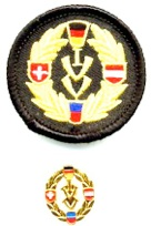 ivv patch